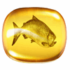 Fish oil may not be as healthful as you think, study finds